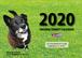 2020壁掛けカレンダー