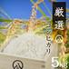 厳選コシヒカリ(白米 5kg)令和元年産