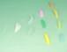 コスメティックラッシュパーマ ロッド 基本11種類セット 1ペア