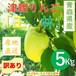 【令和元年度産発売中】青森県津軽産りんご【王林】訳あり5Kg/箱【送料無料】