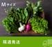 《隔週発送》FIO野菜-定期便 Mサイズ