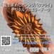 「蜜を求めたオレンジバタフライ」デジタルジュエリーデータ