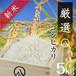 【新米】厳選コシヒカリ(白米 5kg)令和元年産