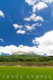 新緑と大山