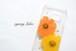 iPhone / andoroid 対応 押し花スマホケース「赤橙と蒲公英色の秋桜(コスモス)」