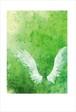 緑の誘惑 ポストカード