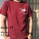 ヒヨケムシTシャツ(Sun spider T-Shirts