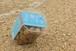 人魚のビーチク