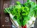 無農薬有機野菜セットSサイズ【3回分】