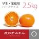 【完売】虎の子みかんハーフ・早生【家庭用2.5kg】