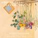 greenpiece × RIN  月1回のお楽しみ:花のセット(1回分のみお試し)【限定15set】