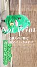 ゴーヤ先生01  【京都】
