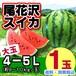 尾花沢スイカ(大玉 9-10kg玉×1玉入り)