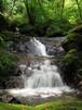 博多の水(卑弥呼の雫)10ℓ(免疫活性水)