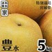 【送料無料】【宮城県産】家庭用 産地直送 ブランド和梨「豊水」5kg/箱