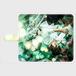 ▪️アンドロイド用Mサイズ Kane Dennis × Atelier Lapinus コラボ アンドロイドスマホケースMサイズ タイムグリーン 手帳型