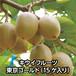 キウイフルーツ 東京ゴールド(15ケ入り)【送料込み】
