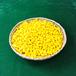 黄 木製ポーン(約1000個)