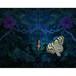 蝶と精霊・22