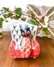 愛らしい♡乙女のフクロウとソファ バリ島の木彫り