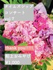【船上お土産¥1000】2021.6.16 無観客配信live TimeZshipConcert vol.7