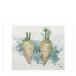 ポストカード:White carrots (EH-022)