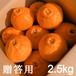 送料無料 天デコ 不知火 肥の豊 (デコポン)贈答用2.5kg 3L〜2L 熊本県産 冬のギフト