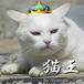 """""""猫王"""" --- techno  ft. Sato Sasara"""
