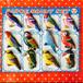 昭和レトロ★ブリキの鳥さんブローチ★12個セット