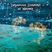 【CD】 FLYING DUGONG BAND/Dreaming Dugongs of Henoko