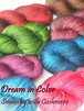 Dream in Color / Smooshy with Cashmere