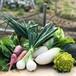 オーガニック野菜セット