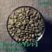 【エチオピア ゲイシャ】生豆(200g入り)
