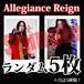 【チェキ・ランダム5枚】Allegiance Reign