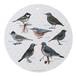 マルチボード 北欧デザイン 白樺 木製 Φ 35 KOUSTRUP & CO. - Garden Birds 庭園の野鳥