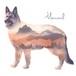 バッググラウンドアート(山・Mountain)/犬猫、ペットうちの子似顔絵
