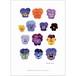 アート ポスター A4 サイズ KOUSTRUP & CO. - Pansy flowers パンジーの花
