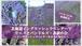北海道イングリッシュラベンダーで リースとバンドルズ・蒸留の会 ~イングリッシュラベンダーをさらに知る日~Zoom&録画配信材料キット★期間限定