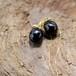 Swingberry HASKELL x ソープベリーアメリカンピアス