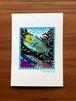 琉球ポストカード<イラブチャーと珊瑚の海>