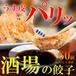 にんにく多め「男餃子」60個(15個×4パック)【お取り寄せ餃子】