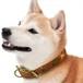 【JEXT】京都西陣織 犬の首輪 本革 首周り32~40cm 武田菱 朱