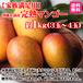 【家族満足用】沖縄糸満産完熟マンゴー約1kg(3~4玉)