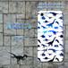 Brilliant Dinosaurs HD【スペース】 スマホケース ハード iPhone/Android