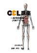 OCL講座【疲労回復編】