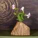 流木の花器、フラワーベース、14