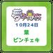 【10月24日】葉ピンチェキ【予約商品】
