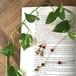 ハートの植物【ネックレス】