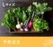 <予約注文>FIO野菜 Lセット(ファミリー向け 大きめセット)