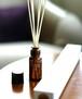 retaW - Fragrance Reed Diffuser - NATURAL MYSTIC*